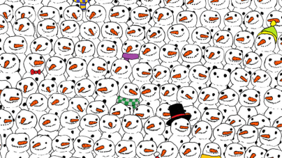 Can You Spot the Panda?